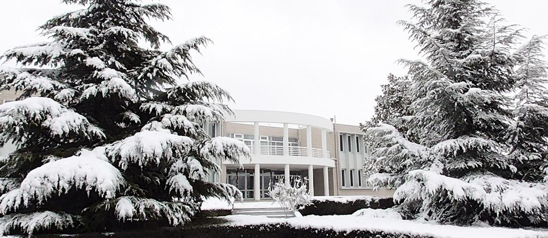 Gymnasio_Snow