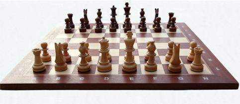 Διακρίσεις στο σκάκι για δύο μαθητές λυκείου