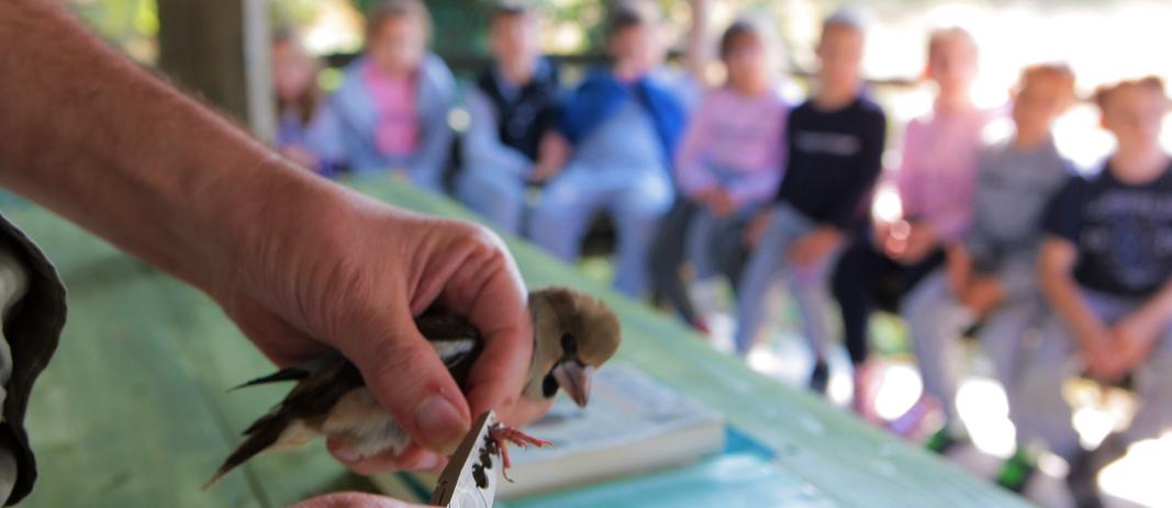 Επίσκεψη μαθητών της Β΄ τάξης στο Ινστιτούτο Δασικών Ερευνών