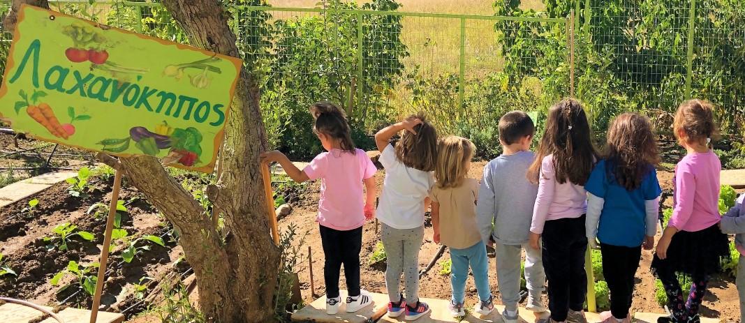 Τα Seeds επισκέφτηκαν τον λαχανόκηπο των Εκπαιδευτηρίων και παρατήρησαν τα διάφορα λαχανικά που έχουν φυτευτεί από μαθητές. - The Seeds took a stroll to the Mandoulides' vegetable garden and observed the various vegetables that have been planted by students.